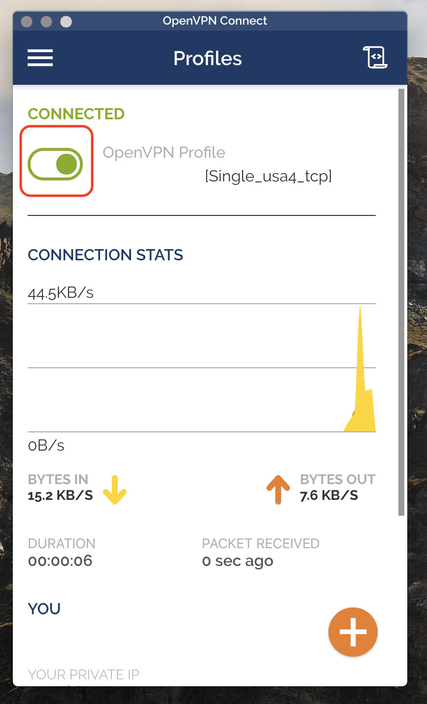 OpenVPN Connect install